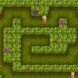 Игра-приключение Адама и Евы для девочек